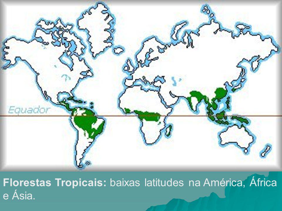 Florestas Tropicais: baixas latitudes na América, África e Ásia.