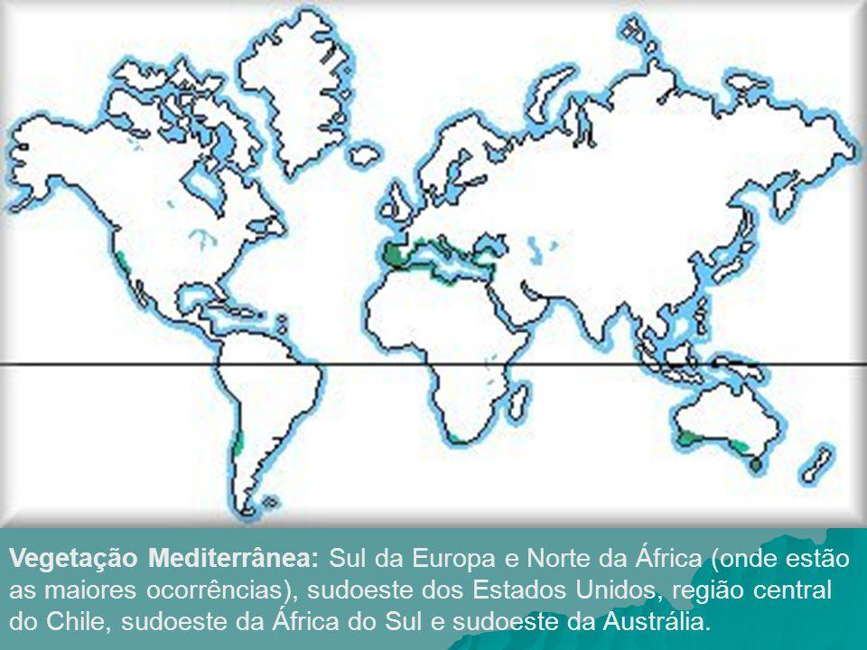 Vegetação Mediterrânea: Sul da Europa e Norte da África (onde estão as maiores ocorrências), sudoeste dos Estados Unidos, região central do Chile, sudoeste da África do Sul e sudoeste da Austrália.