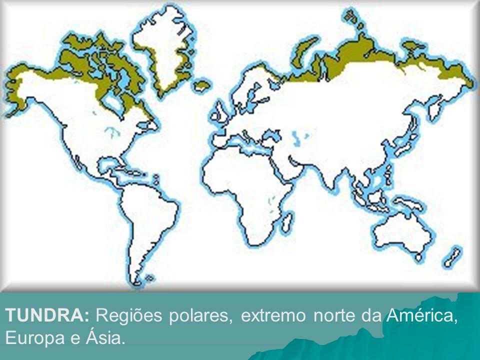 TUNDRA: Regiões polares, extremo norte da América, Europa e Ásia.