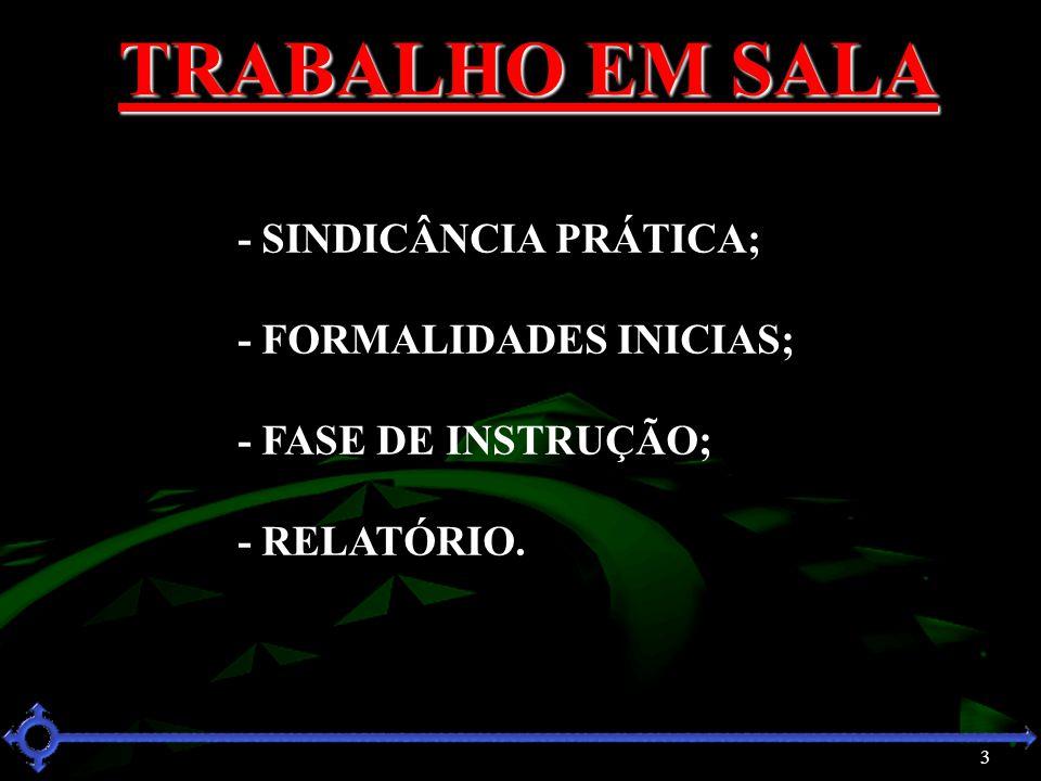 TRABALHO EM SALA - SINDICÂNCIA PRÁTICA; - FORMALIDADES INICIAS;