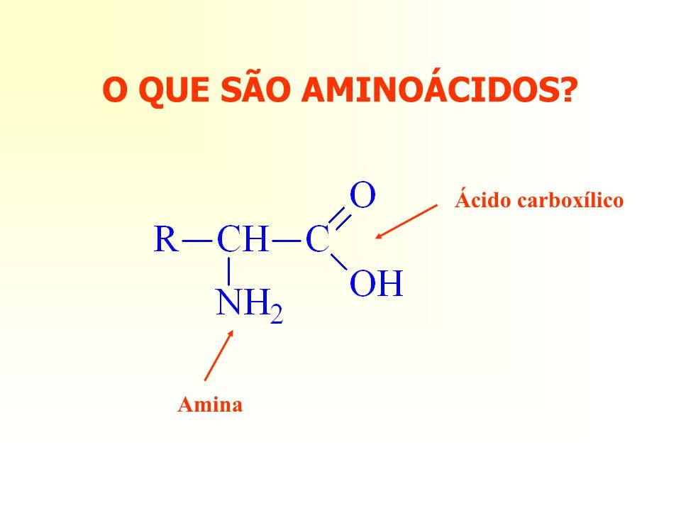 O QUE SÃO AMINOÁCIDOS Ácido carboxílico Amina