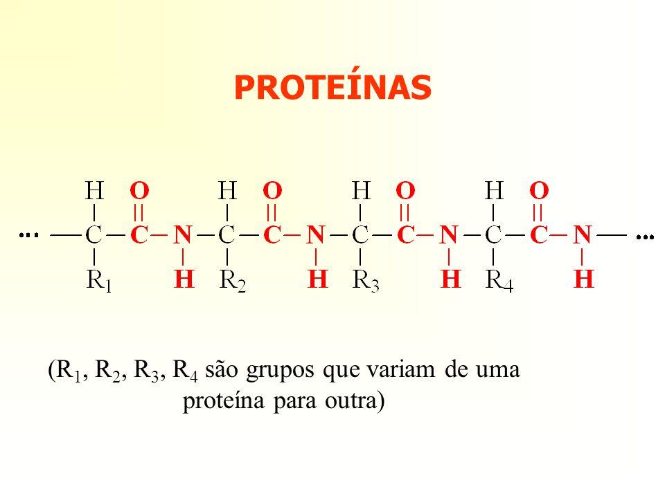 (R1, R2, R3, R4 são grupos que variam de uma proteína para outra)