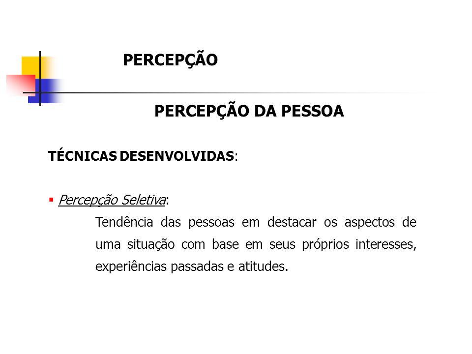 PERCEPÇÃO PERCEPÇÃO DA PESSOA TÉCNICAS DESENVOLVIDAS: