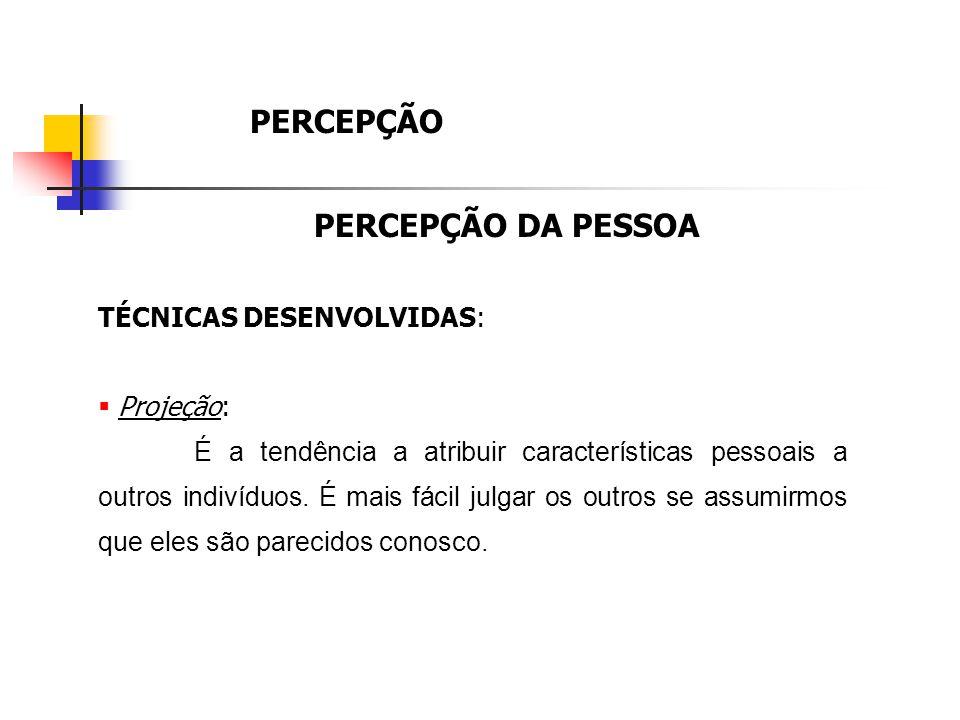 PERCEPÇÃO PERCEPÇÃO DA PESSOA TÉCNICAS DESENVOLVIDAS: Projeção:
