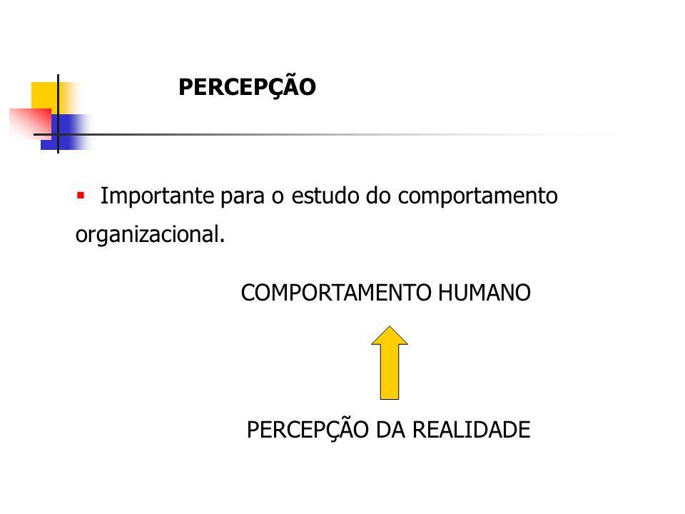 PERCEPÇÃO Importante para o estudo do comportamento organizacional.