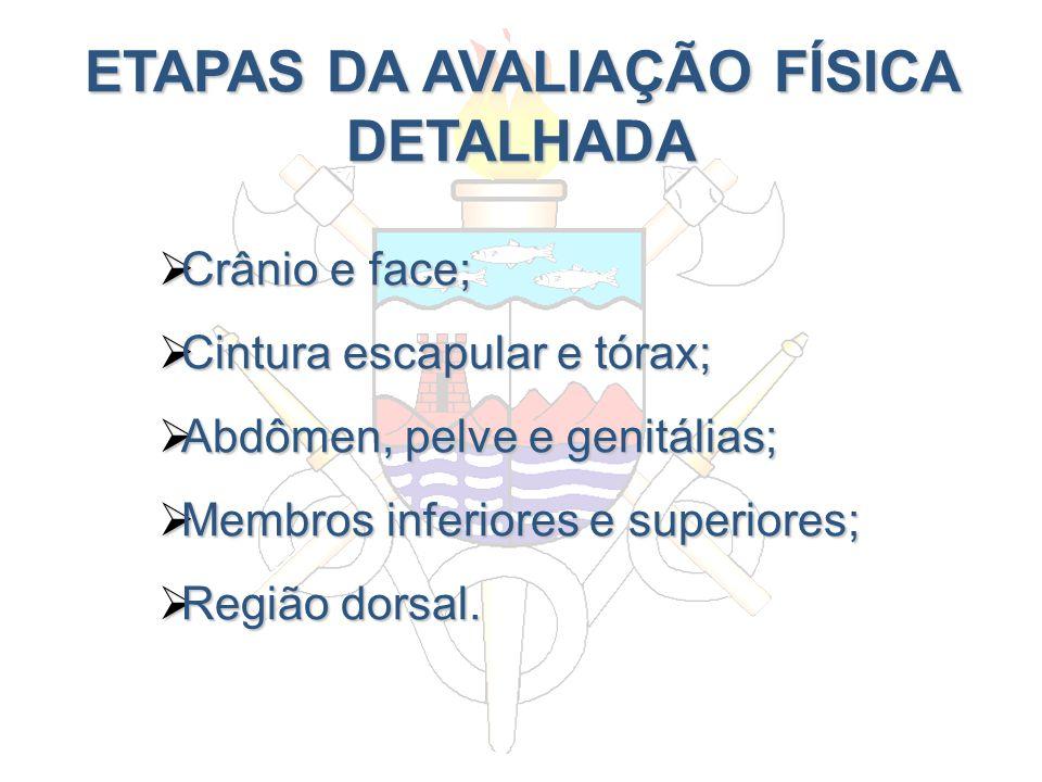 ETAPAS DA AVALIAÇÃO FÍSICA DETALHADA