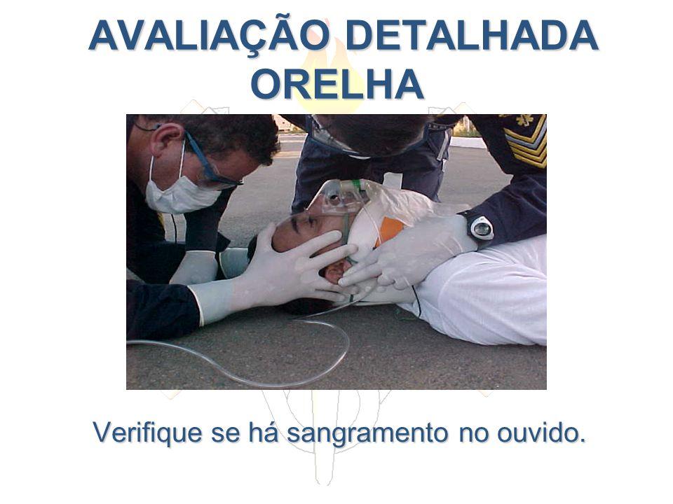 AVALIAÇÃO DETALHADA ORELHA