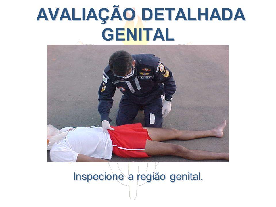 AVALIAÇÃO DETALHADA GENITAL