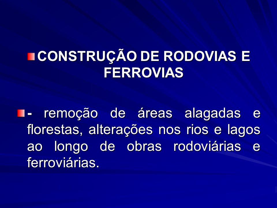 CONSTRUÇÃO DE RODOVIAS E FERROVIAS