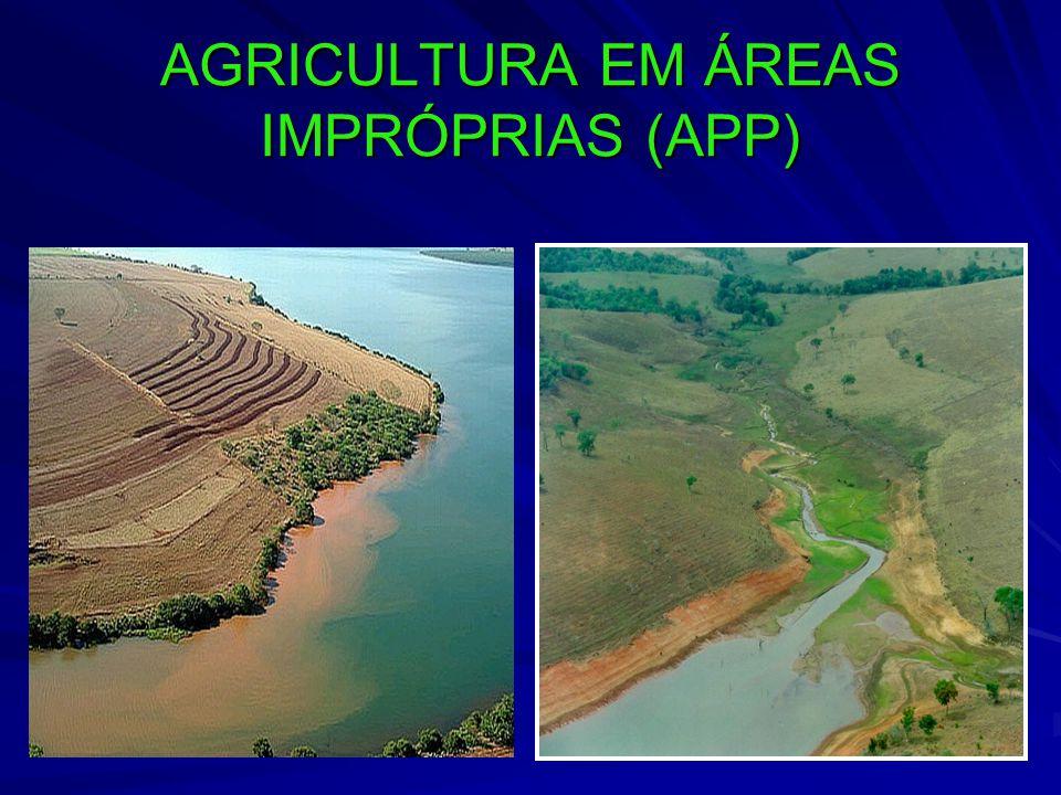 AGRICULTURA EM ÁREAS IMPRÓPRIAS (APP)