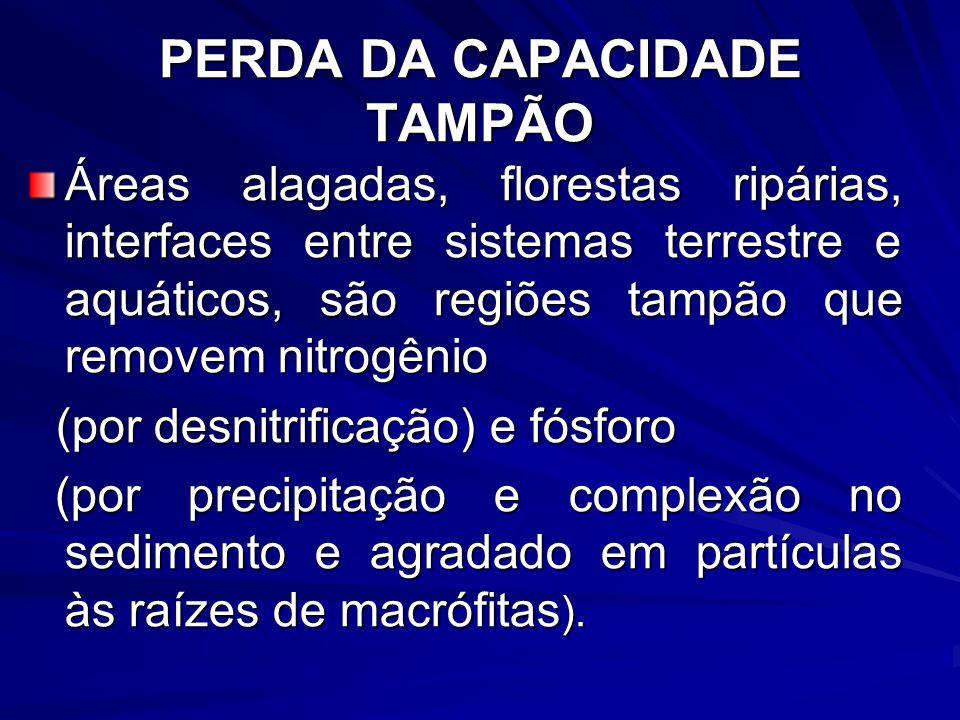 PERDA DA CAPACIDADE TAMPÃO