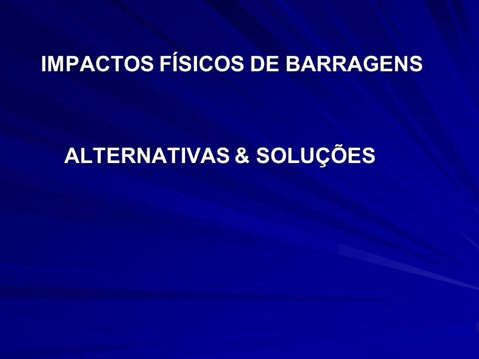 IMPACTOS FÍSICOS DE BARRAGENS