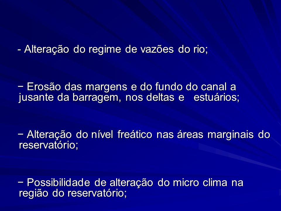 - Alteração do regime de vazões do rio;