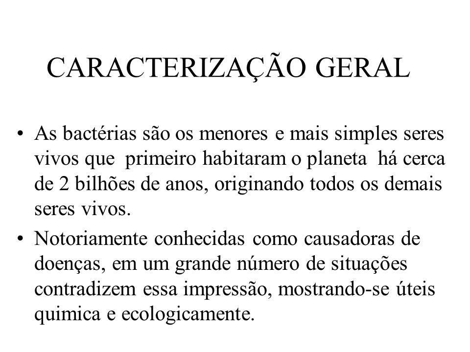 CARACTERIZAÇÃO GERAL