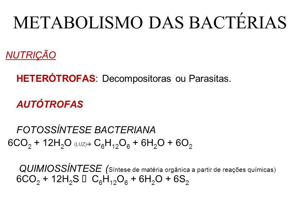 METABOLISMO DAS BACTÉRIAS
