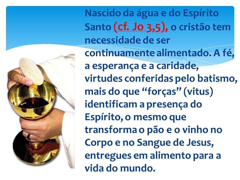 Nascido da água e do Espírito Santo (cf