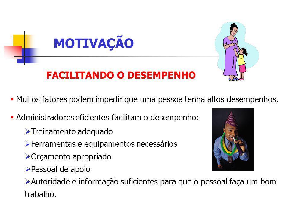MOTIVAÇÃO FACILITANDO O DESEMPENHO