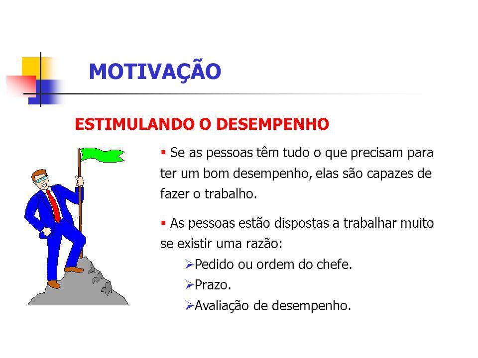 MOTIVAÇÃO ESTIMULANDO O DESEMPENHO