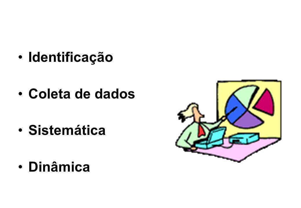 Identificação Coleta de dados Sistemática Dinâmica