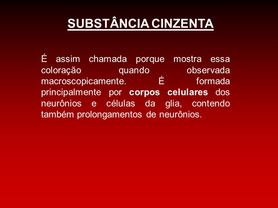 SUBSTÂNCIA CINZENTA
