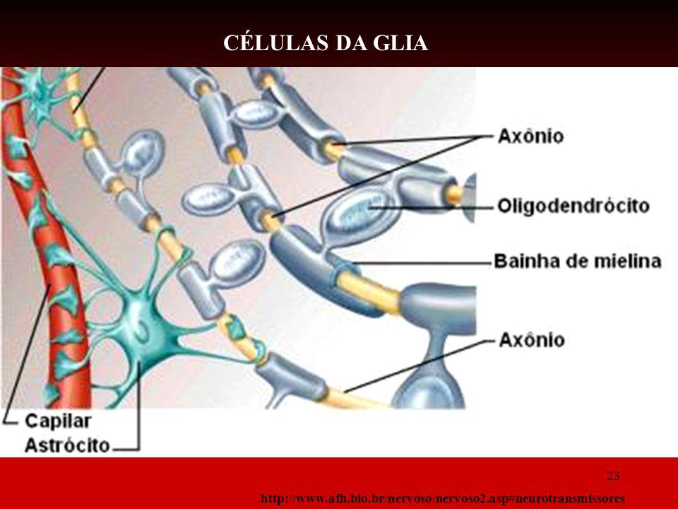 CÉLULAS DA GLIA 23 http://www.afh.bio.br/nervoso/nervoso2.asp#neurotransmissores 23