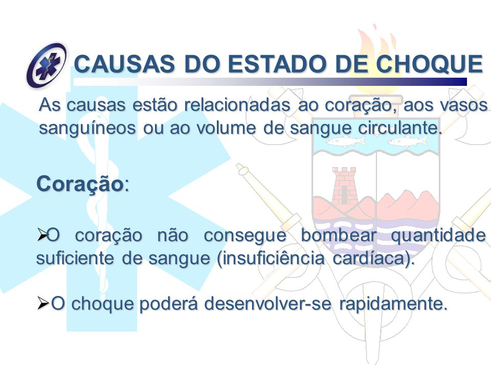 CAUSAS DO ESTADO DE CHOQUE