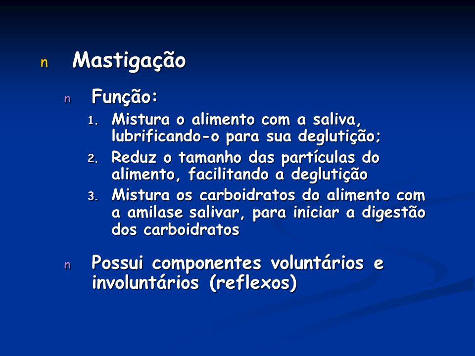 Mastigação Função: Mistura o alimento com a saliva, lubrificando-o para sua deglutição;