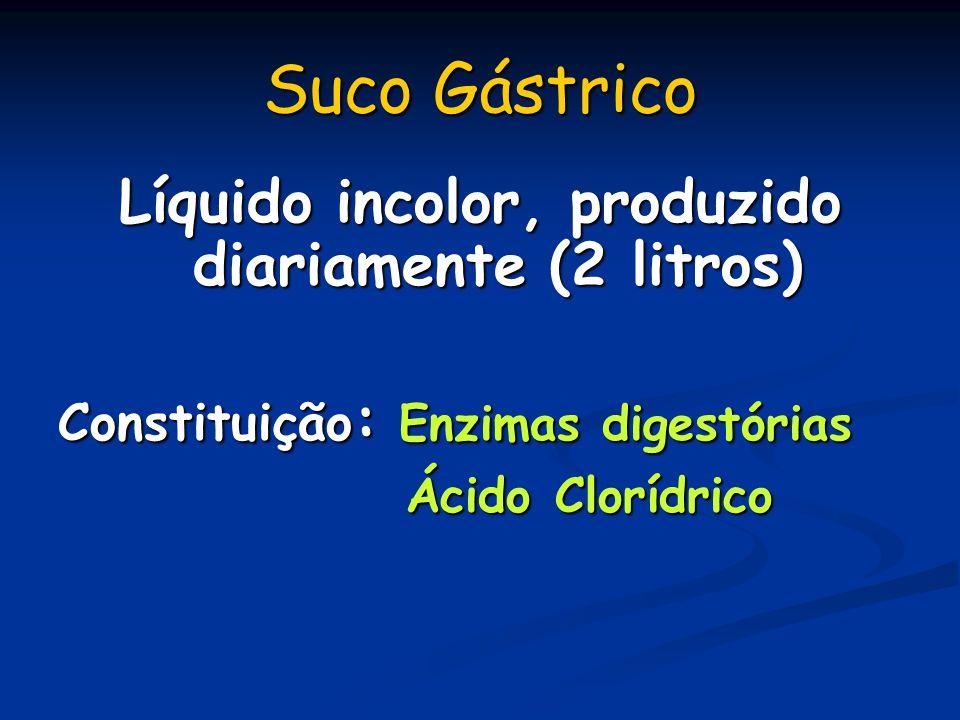 Líquido incolor, produzido diariamente (2 litros)