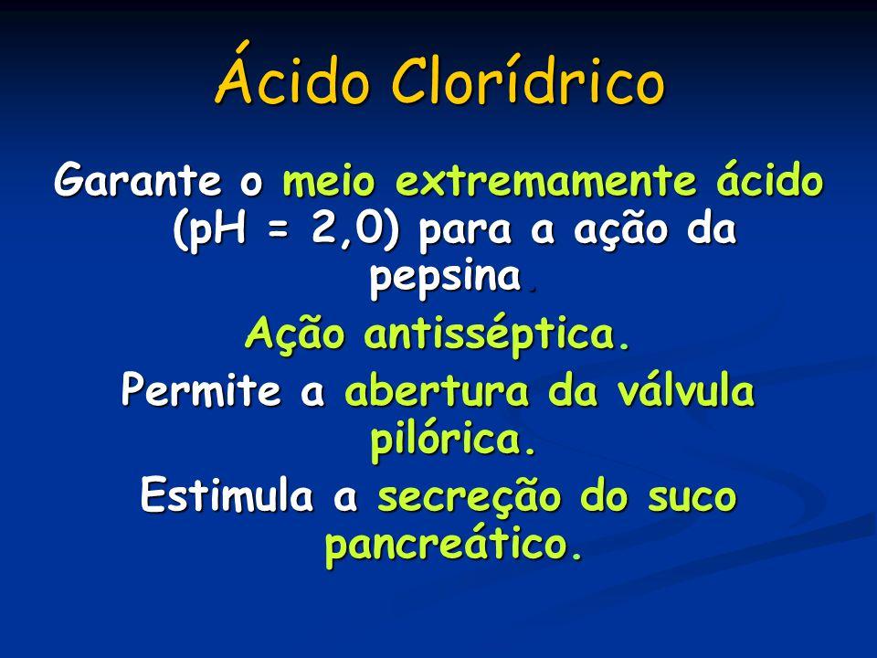 Ácido Clorídrico Garante o meio extremamente ácido (pH = 2,0) para a ação da pepsina. Ação antisséptica.