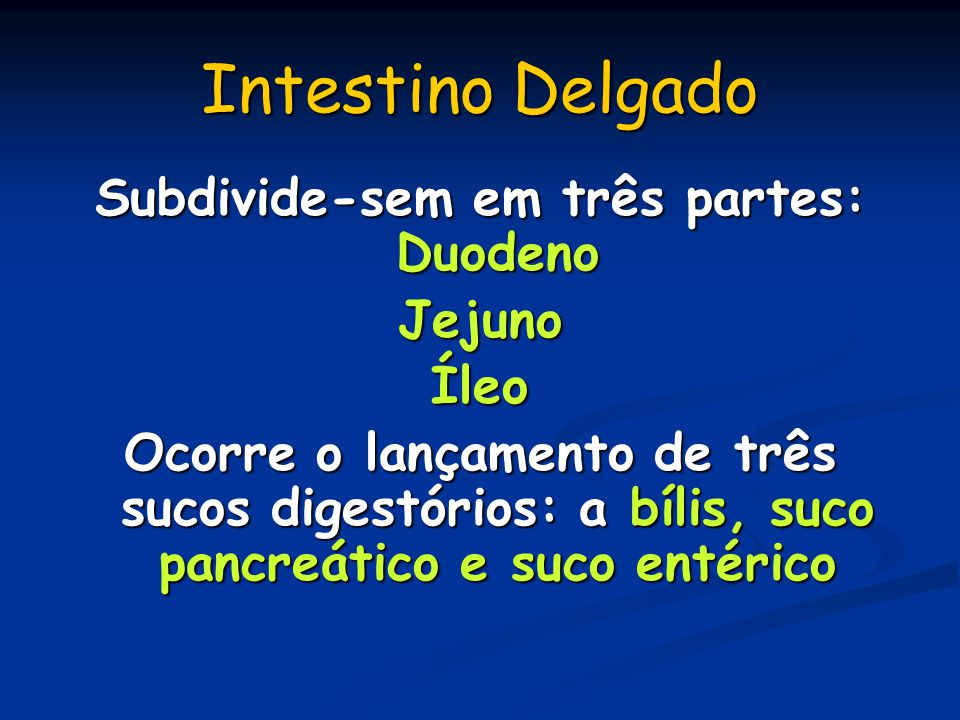Subdivide-sem em três partes: Duodeno