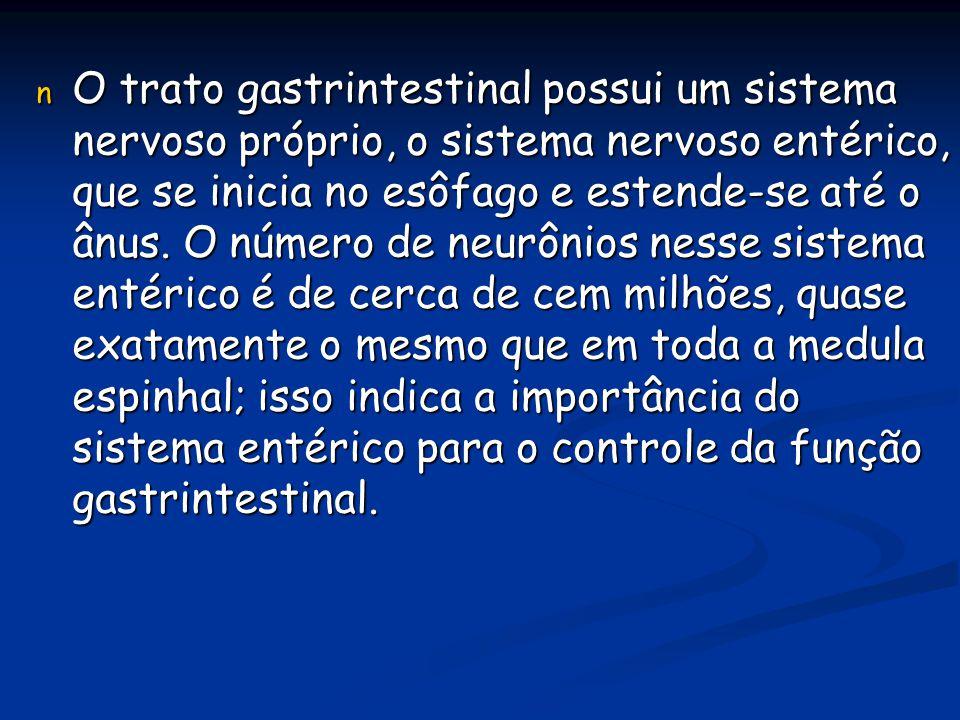 O trato gastrintestinal possui um sistema nervoso próprio, o sistema nervoso entérico, que se inicia no esôfago e estende-se até o ânus.