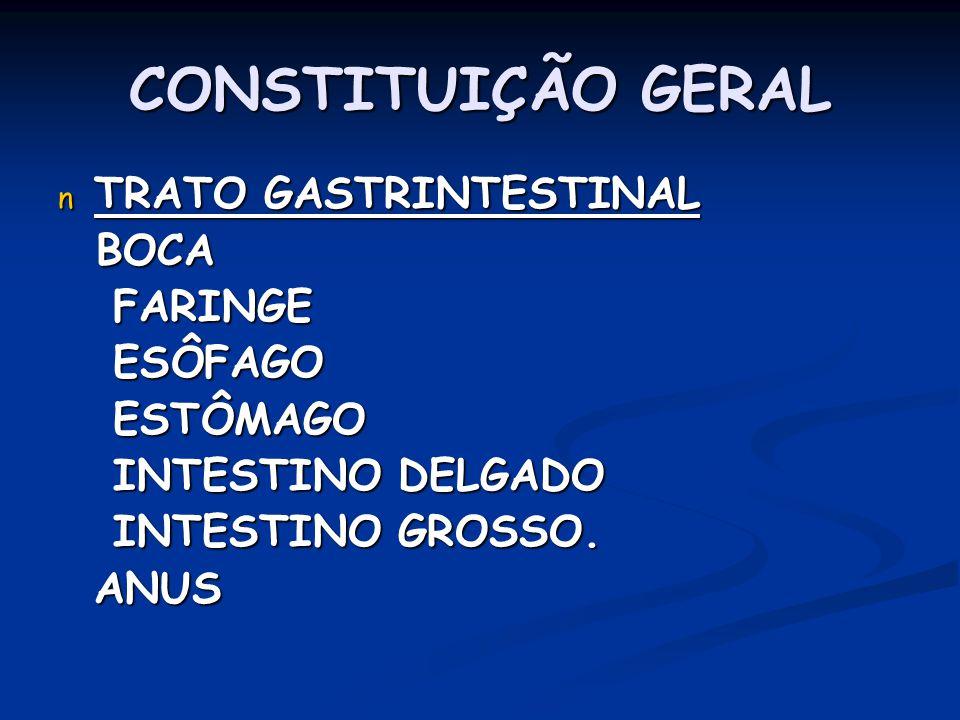 CONSTITUIÇÃO GERAL TRATO GASTRINTESTINAL BOCA FARINGE ESÔFAGO ESTÔMAGO