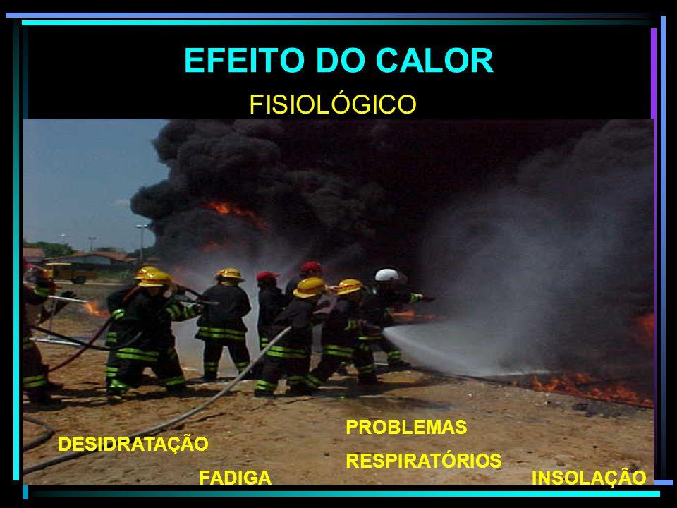 EFEITO DO CALOR FISIOLÓGICO PROBLEMAS RESPIRATÓRIOS DESIDRATAÇÃO