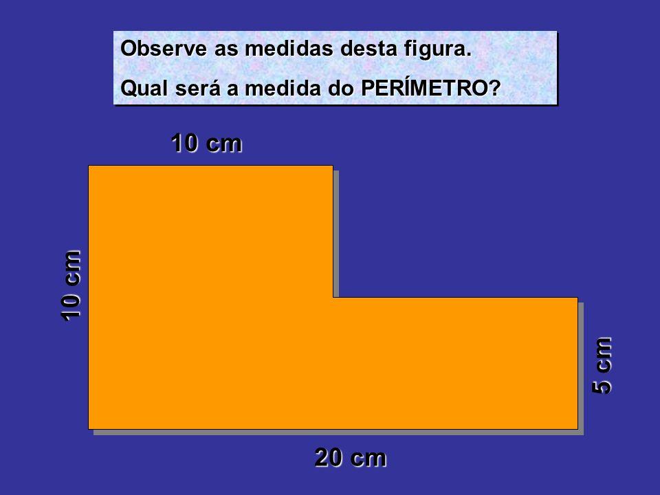 10 cm 10 cm 5 cm 20 cm Observe as medidas desta figura.