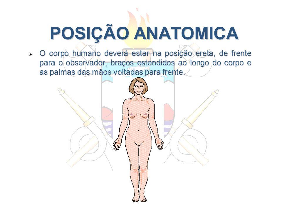 POSIÇÃO ANATOMICA