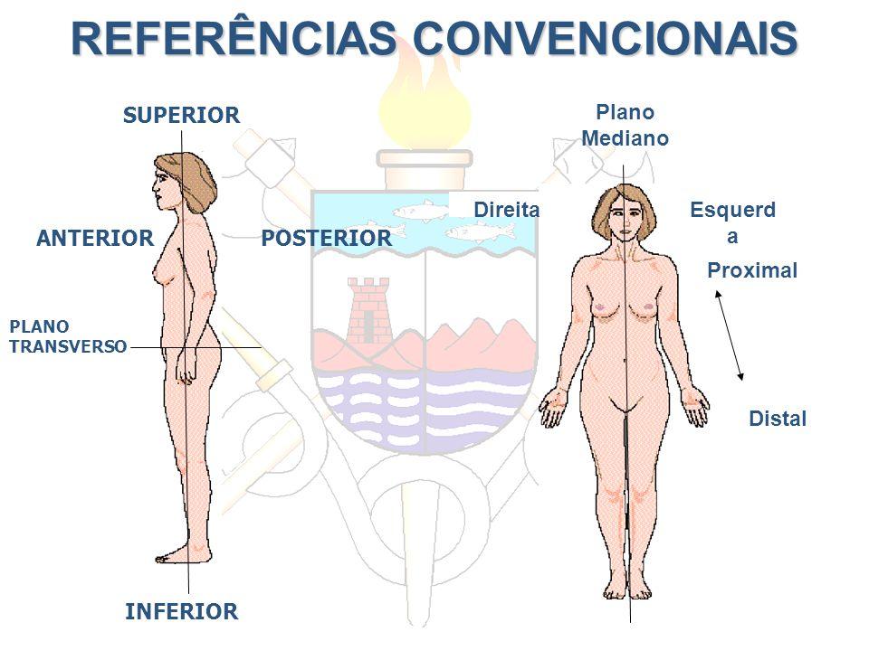 REFERÊNCIAS CONVENCIONAIS