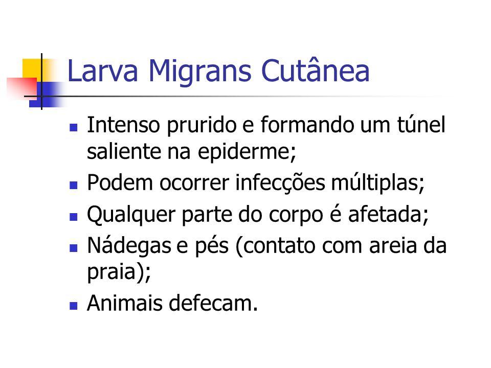 Larva Migrans Cutânea Intenso prurido e formando um túnel saliente na epiderme; Podem ocorrer infecções múltiplas;