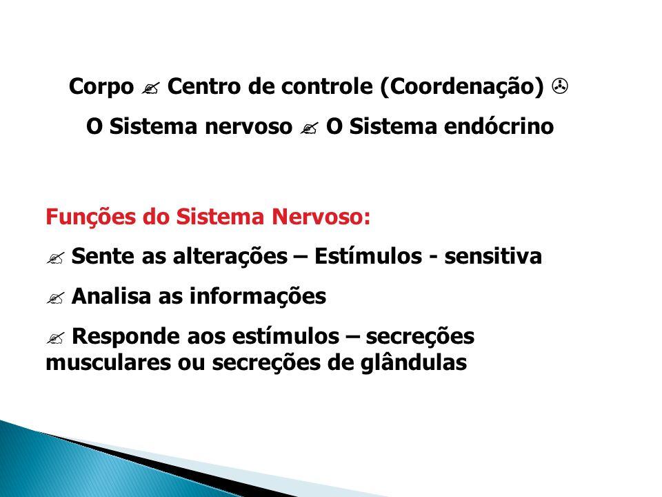 Corpo  Centro de controle (Coordenação)  O Sistema nervoso  O Sistema endócrino