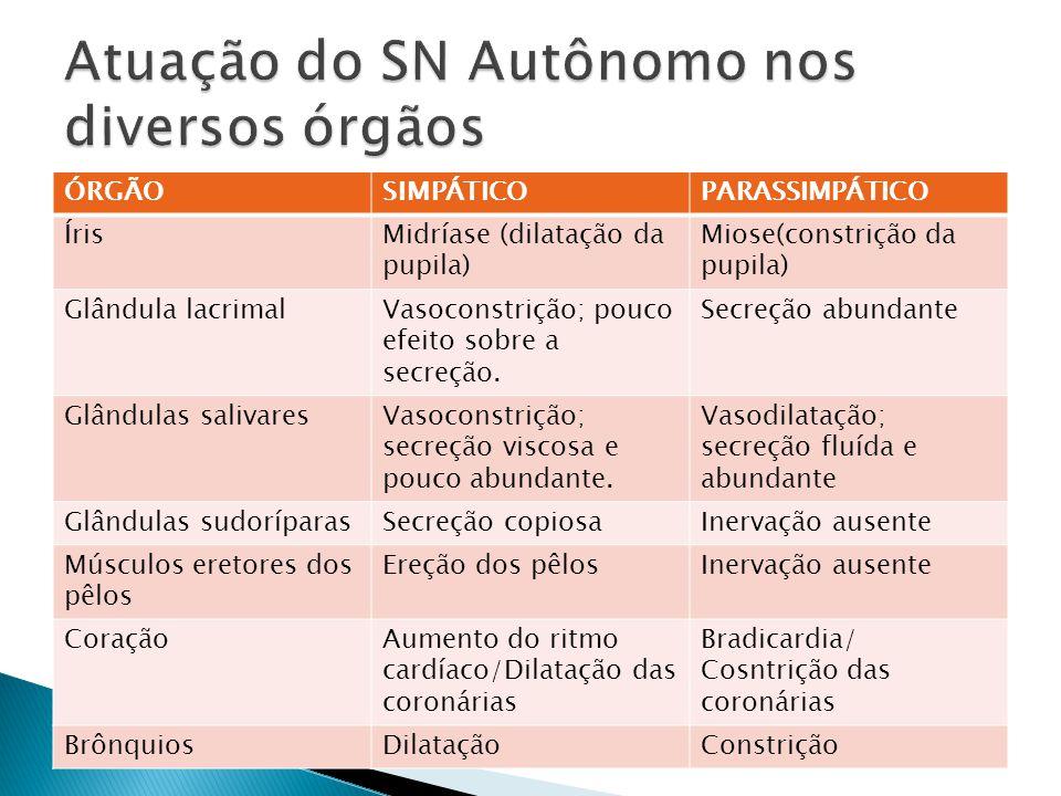 Atuação do SN Autônomo nos diversos órgãos