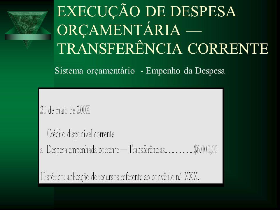 EXECUÇÃO DE DESPESA ORÇAMENTÁRIA — TRANSFERÊNCIA CORRENTE