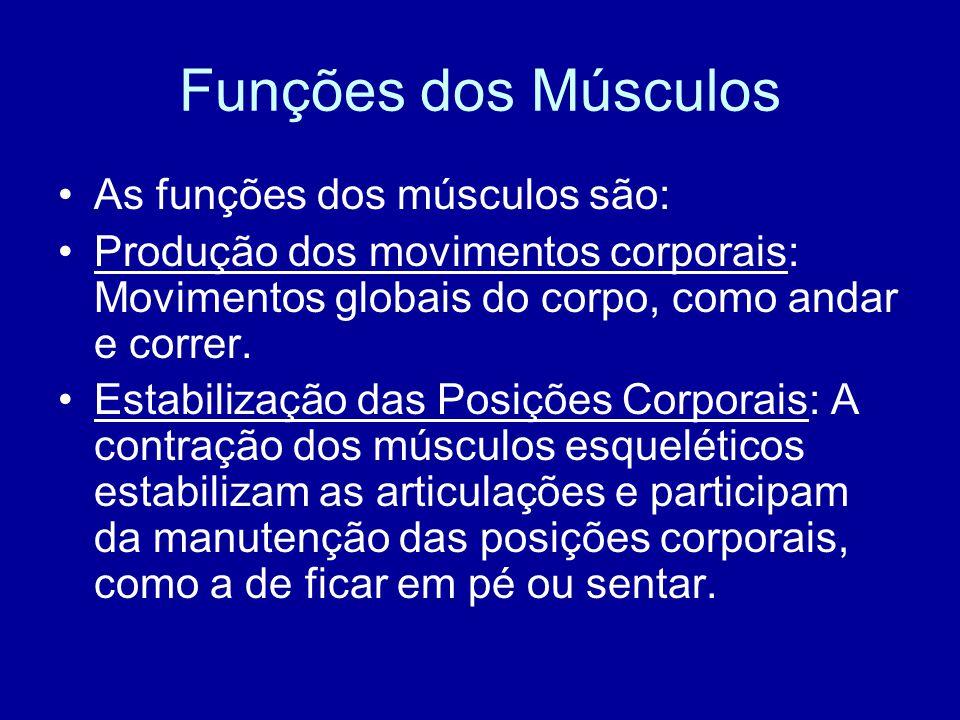 Funções dos Músculos As funções dos músculos são: