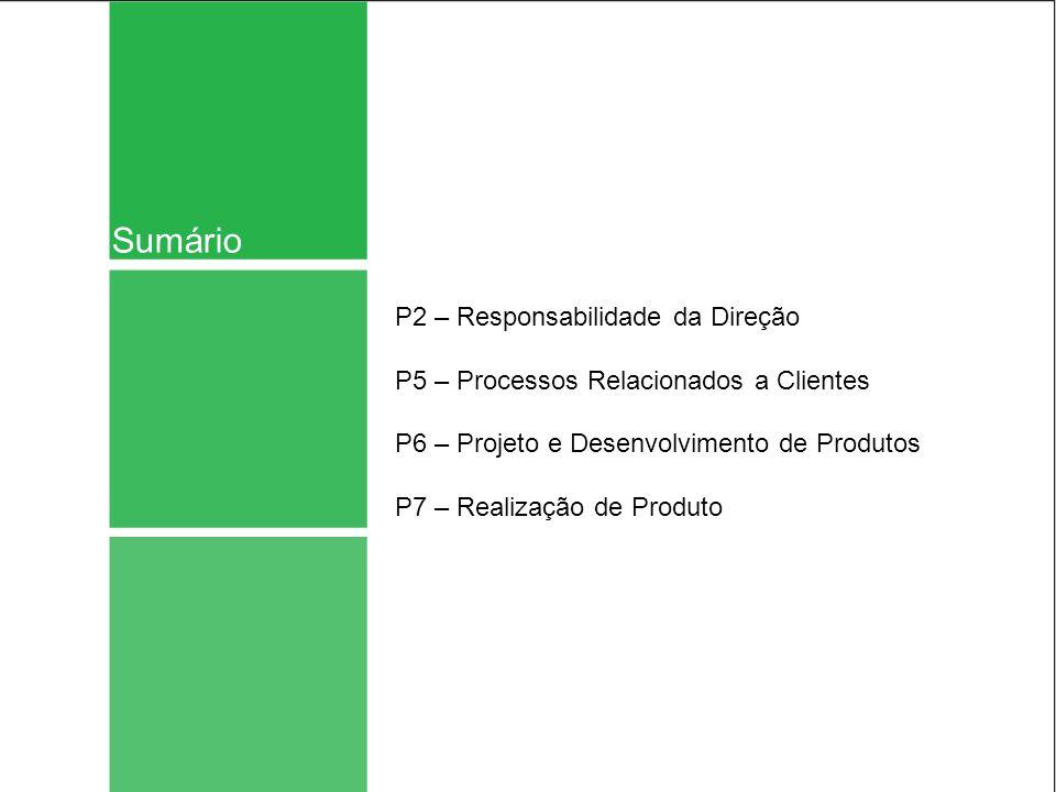 Sumário P2 – Responsabilidade da Direção