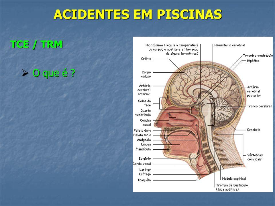 ACIDENTES EM PISCINAS TCE / TRM O que é