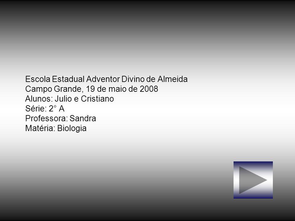 Escola Estadual Adventor Divino de Almeida Campo Grande, 19 de maio de 2008 Alunos: Julio e Cristiano Série: 2° A Professora: Sandra Matéria: Biologia