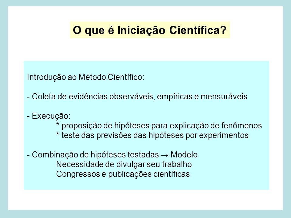 O que é Iniciação Científica