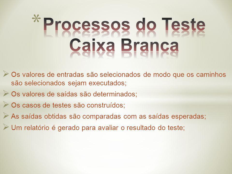 Processos do Teste Caixa Branca