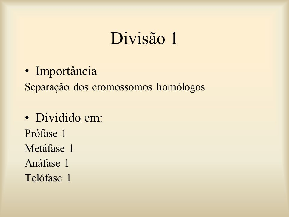 Divisão 1 Importância Dividido em: Separação dos cromossomos homólogos