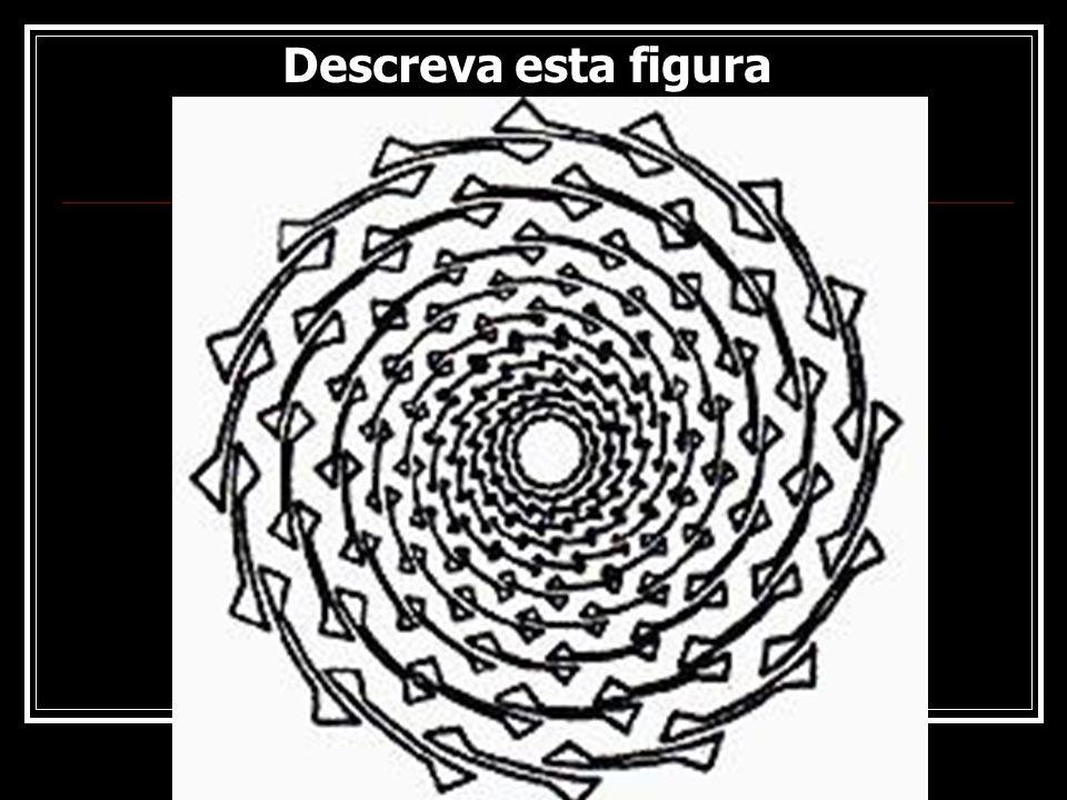Descreva esta figura Rogério Flores 10