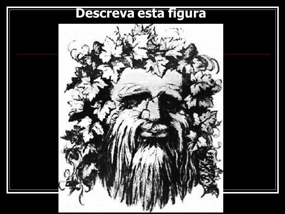 Descreva esta figura Rogério Flores 11