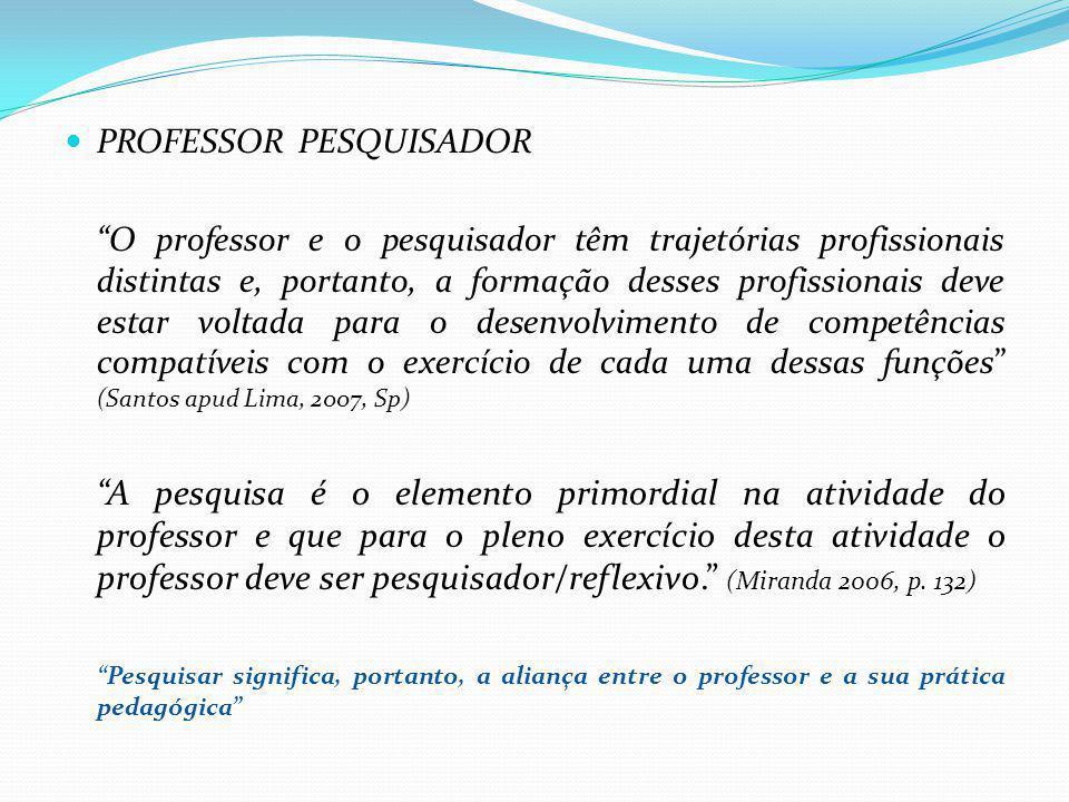 PROFESSOR PESQUISADOR